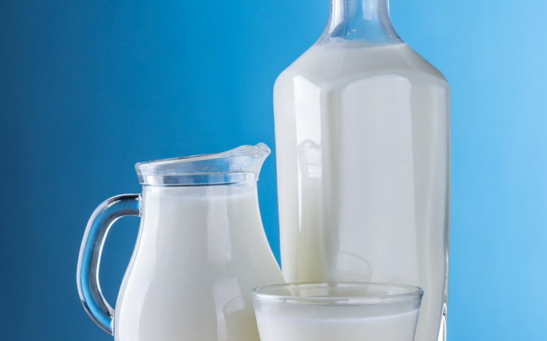 Should Your Family Drink Cow's Milk?